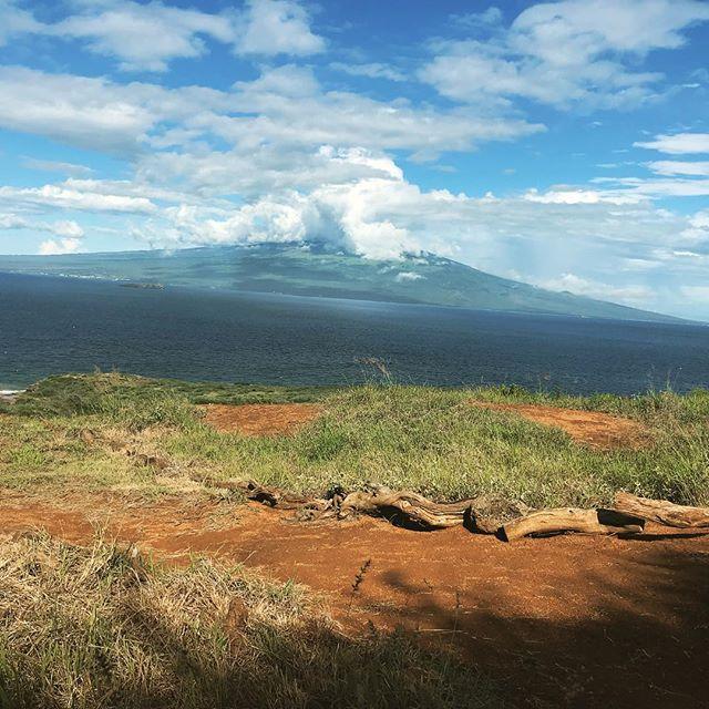 Lunch break looking at Haleakalā