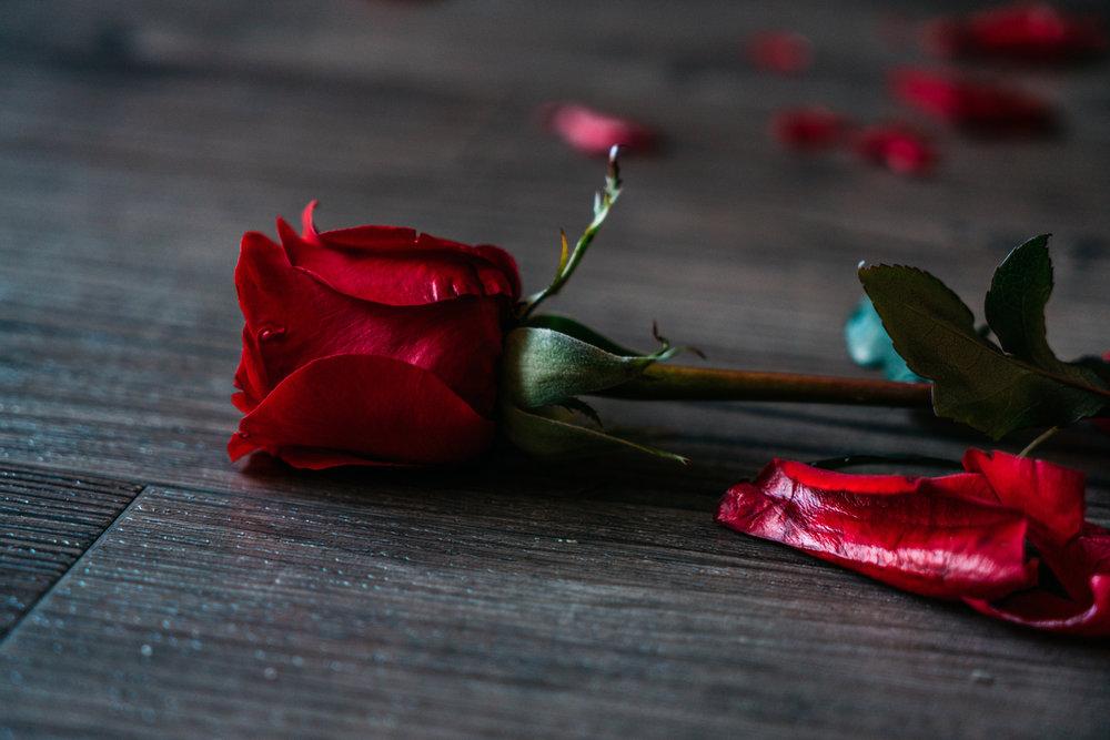 2018.02.09_Angry_Valentine_Hannah_Ridgeway_lowres-11.jpg