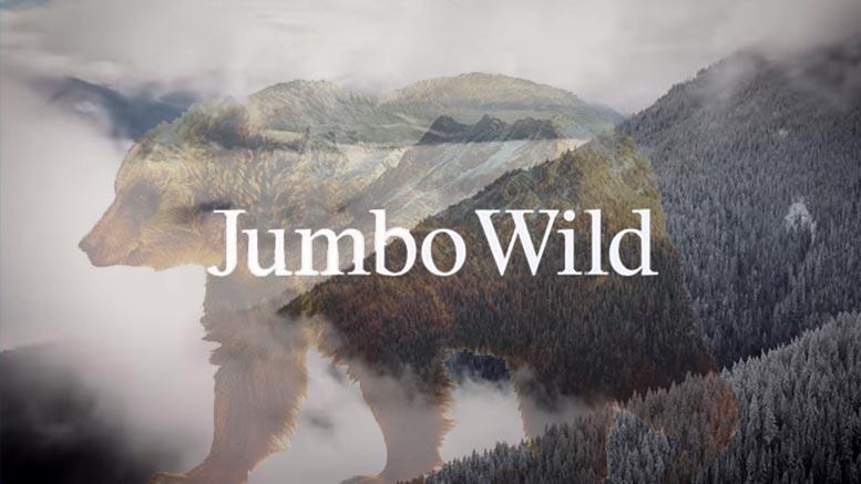 Snowboard_JumboWild-Patagonia-Film.jpg