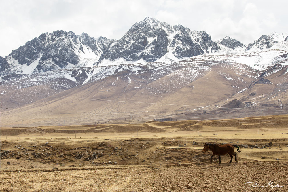 tibet&china (51 of 107).jpg