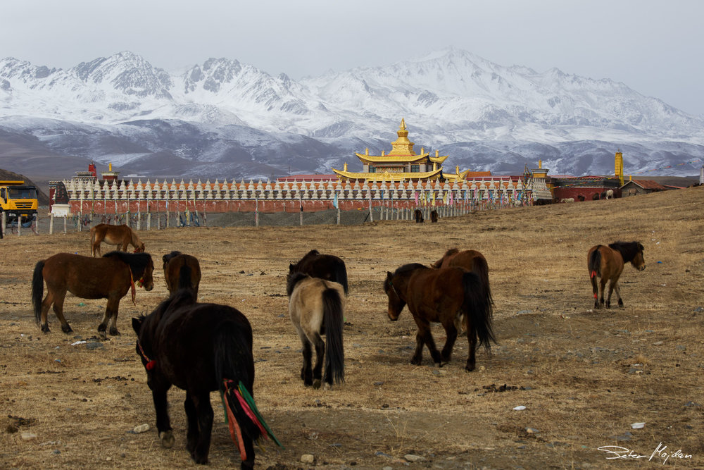 tibet&china (11 of 107).jpg