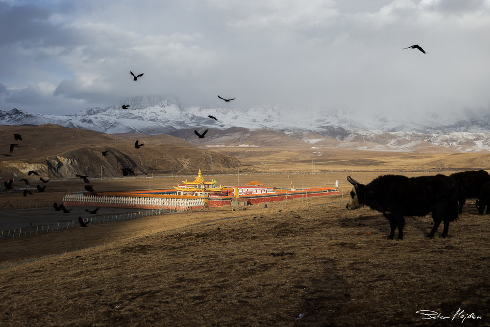 tibet&china (12 of 107).jpg