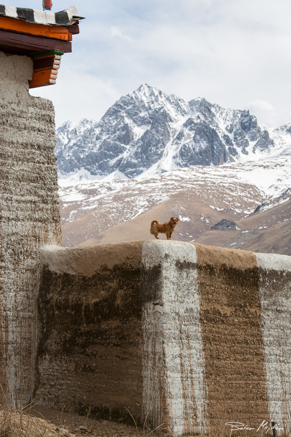 tibet&china (52 of 107).jpg