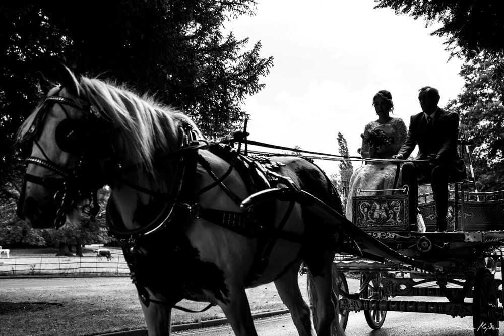bride arriving on horse carriage