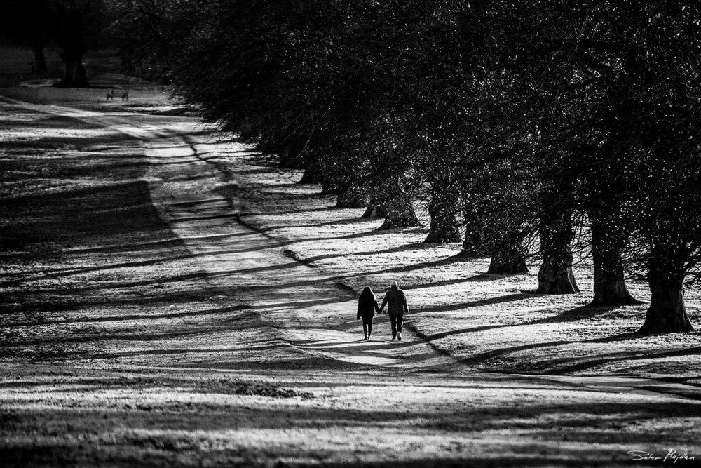 couple walking in Wollaton park
