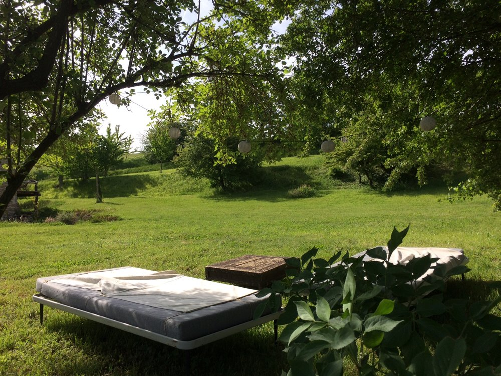 jardin et terrasse (4).JPG