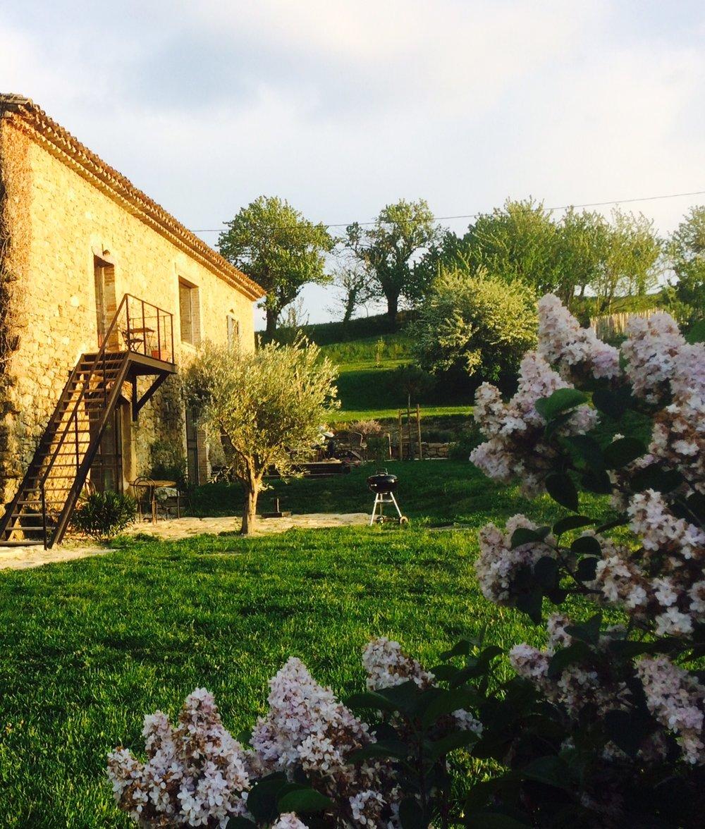 jardin et maison (3).jpg