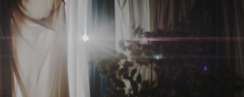 Mayflies-BFL-JakeJelicich.00_02_47_20.Still098_1000.jpg