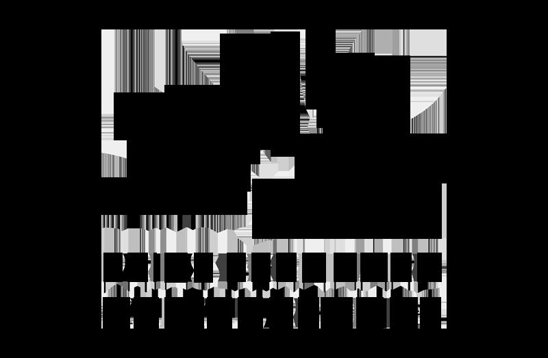 PRINS-BERNHARD-CULTUURFONDS-LOGO-ZWAART.png