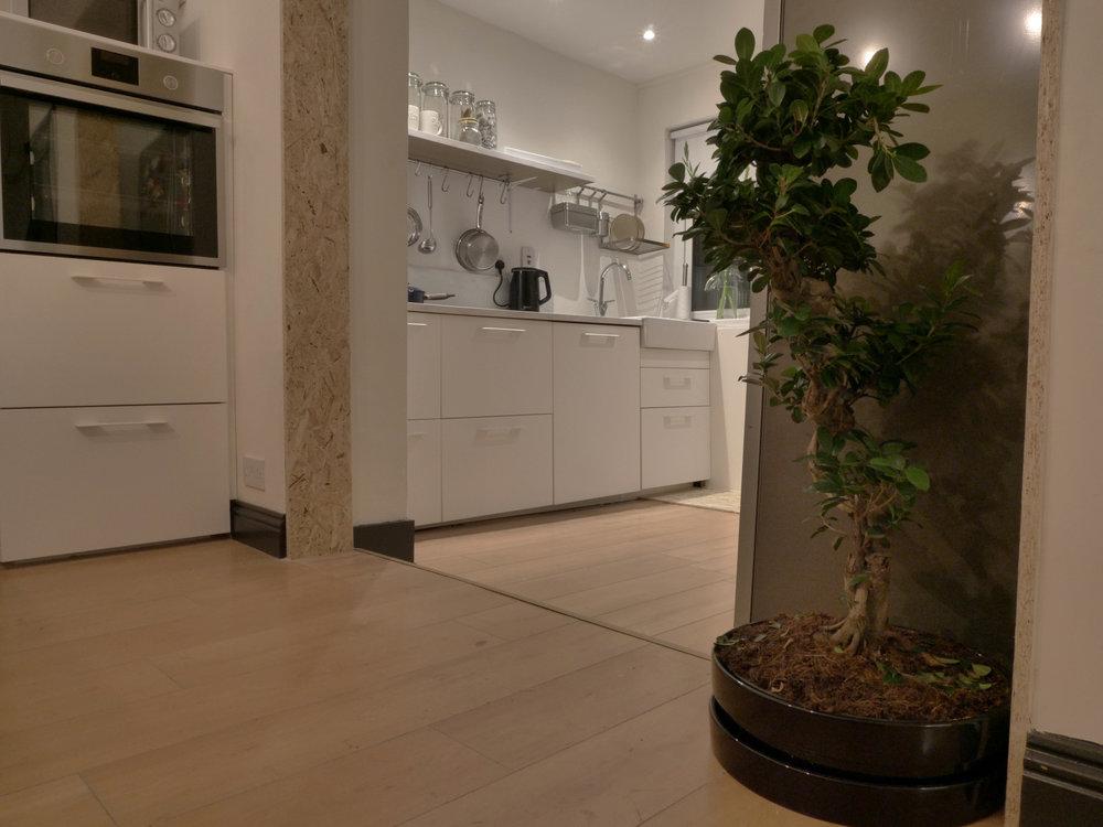 Leixlip - Kitchen - After 5.jpg