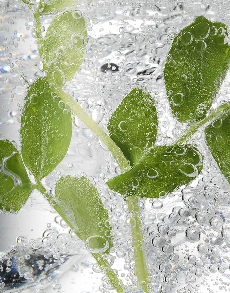 Cocktail Ice Close Up - Pea Shoots RET LR.jpg
