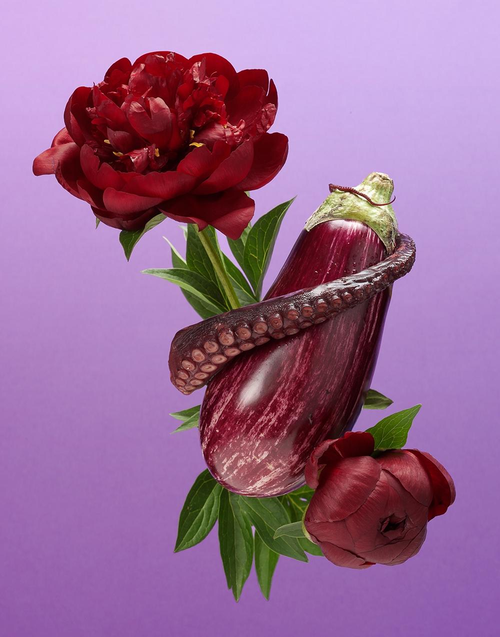 Purple Aubergine Octopus Peony RET 11X14 LR.jpg