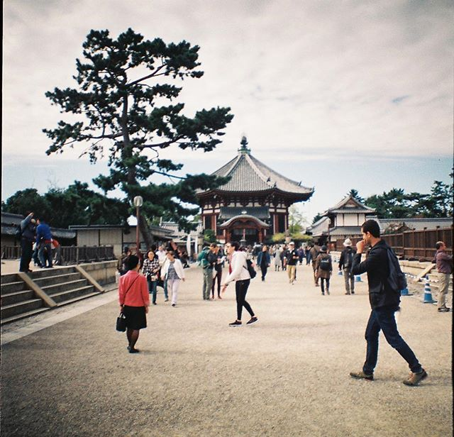 At Nara #35mm