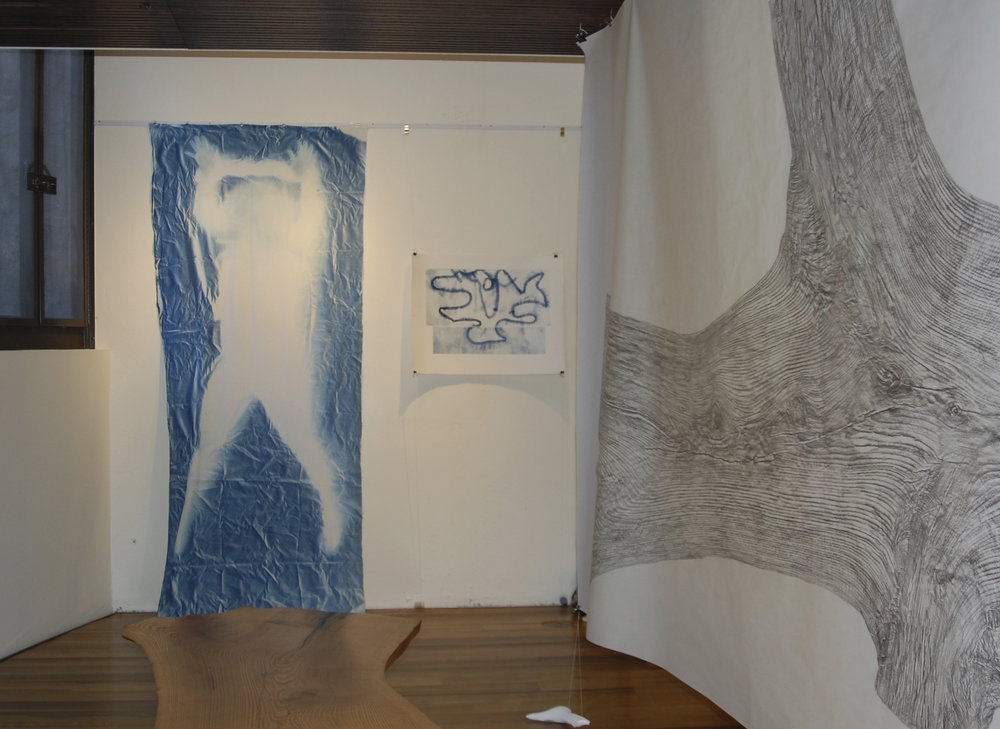 The Copy, installation view