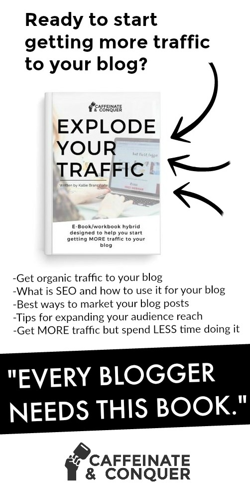 Explode your blog's traffic. Every blogger needs this blog traffic book!