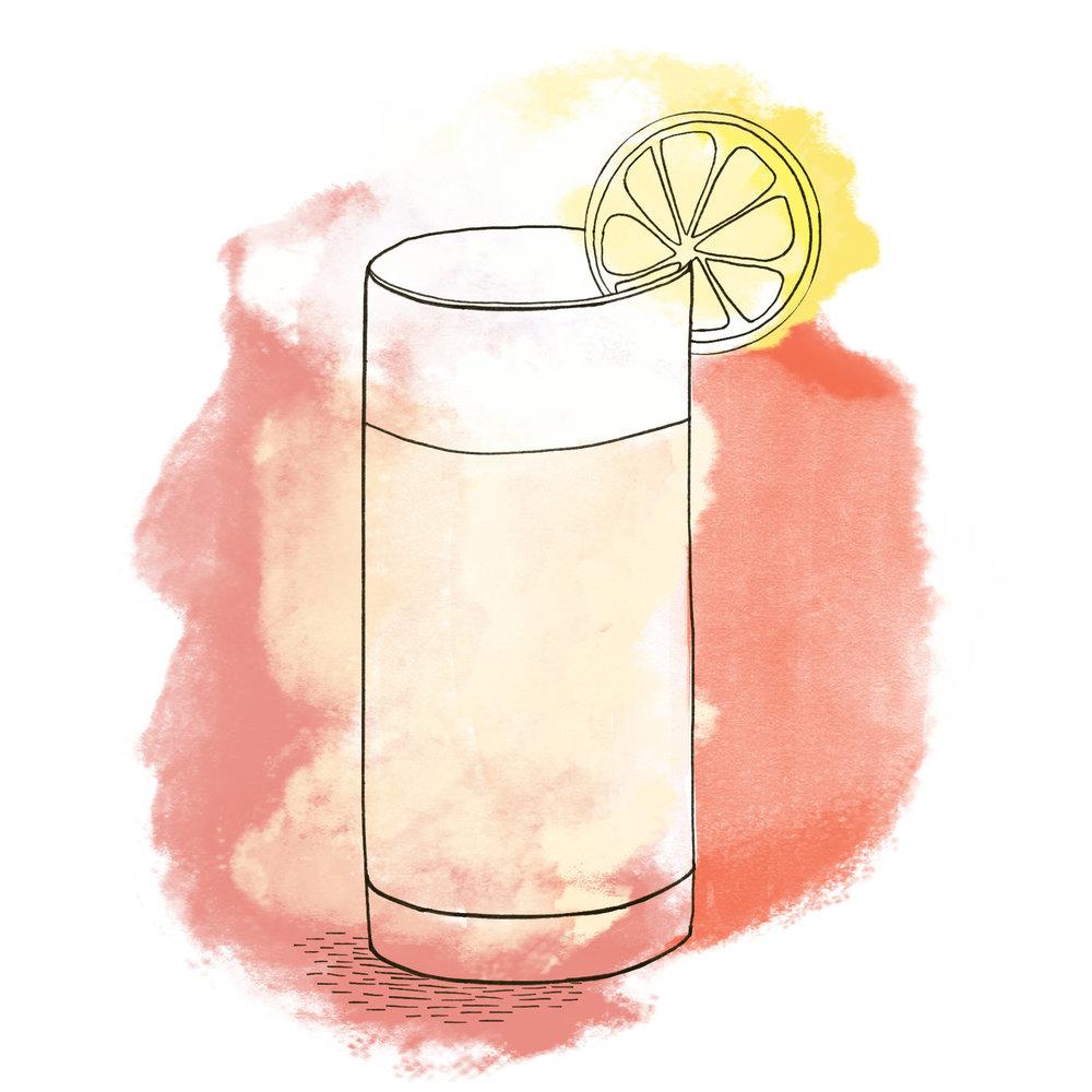gin fizz.jpg