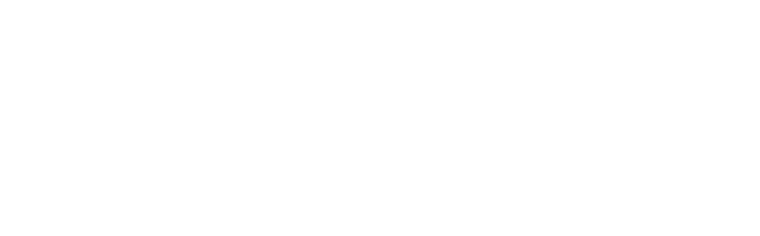 Susan Schadt Press