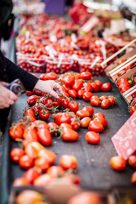Vine-ripened tomatoes.jpg