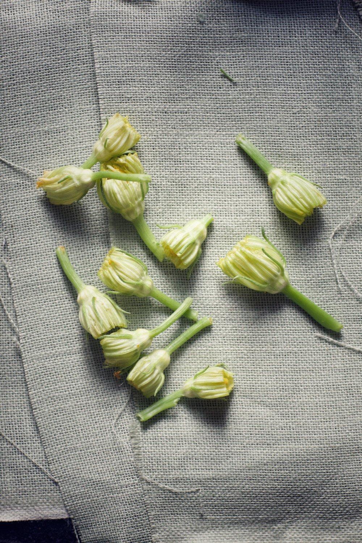 courgetteflowerscut.jpg