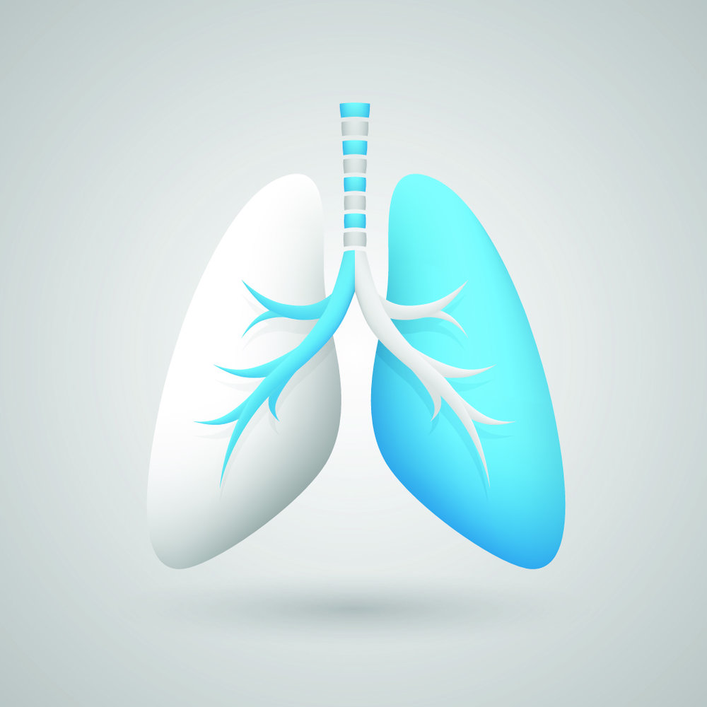 Pulmonary.jpg