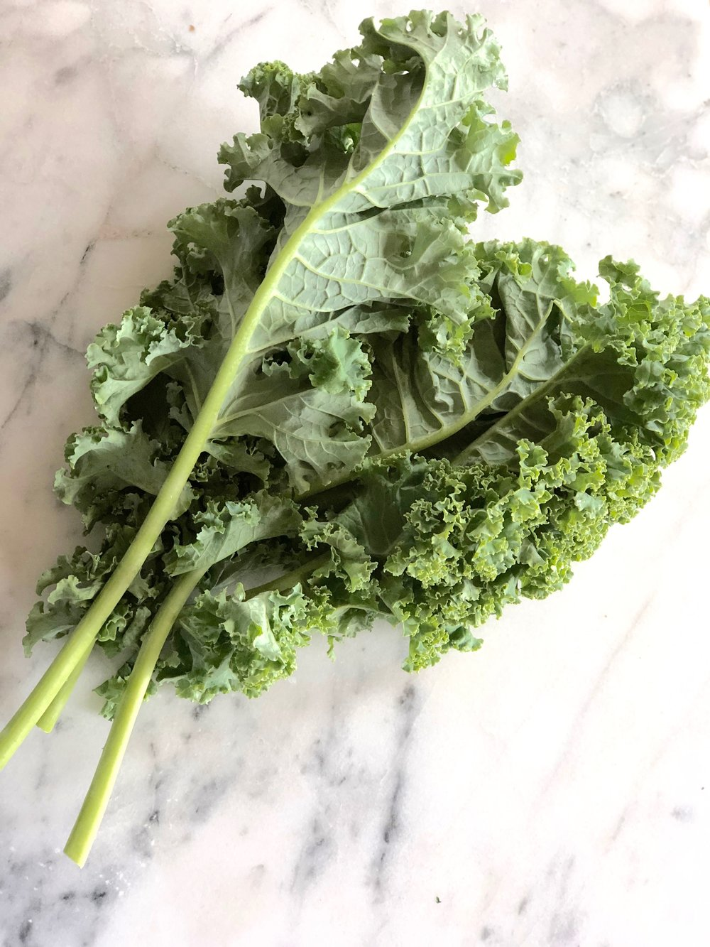 CURLY LEAF KALE  Courser variety, also comes in purple. The stem is much thicker, tear leaves off stem, after washing, massage into dressing, or use in soups, stir-frys and makes great kale chips.