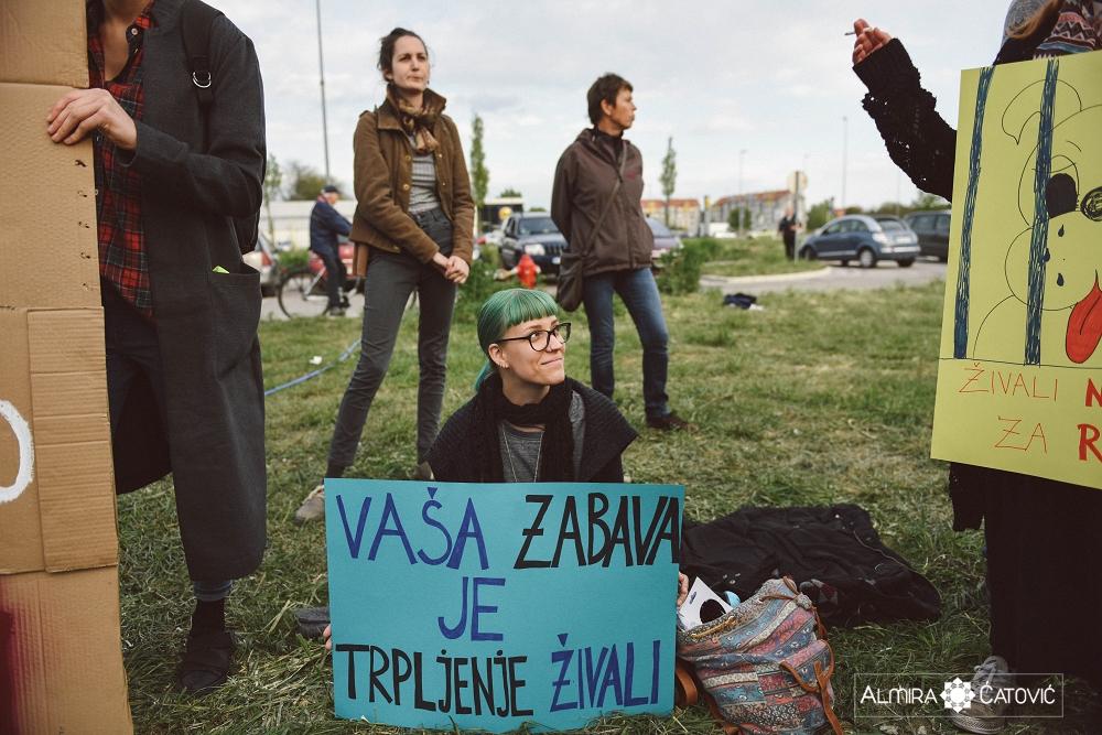 Almira Catovic Cirkus 1 (25).jpg