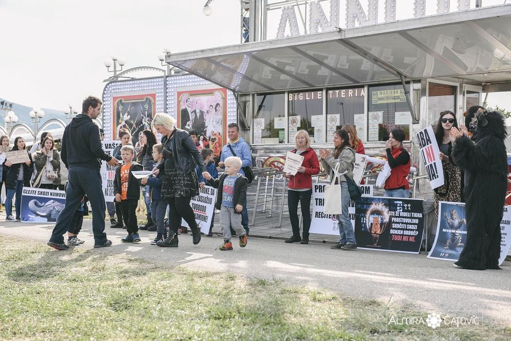 Almira Catovic Cirkus 1 (31).jpg