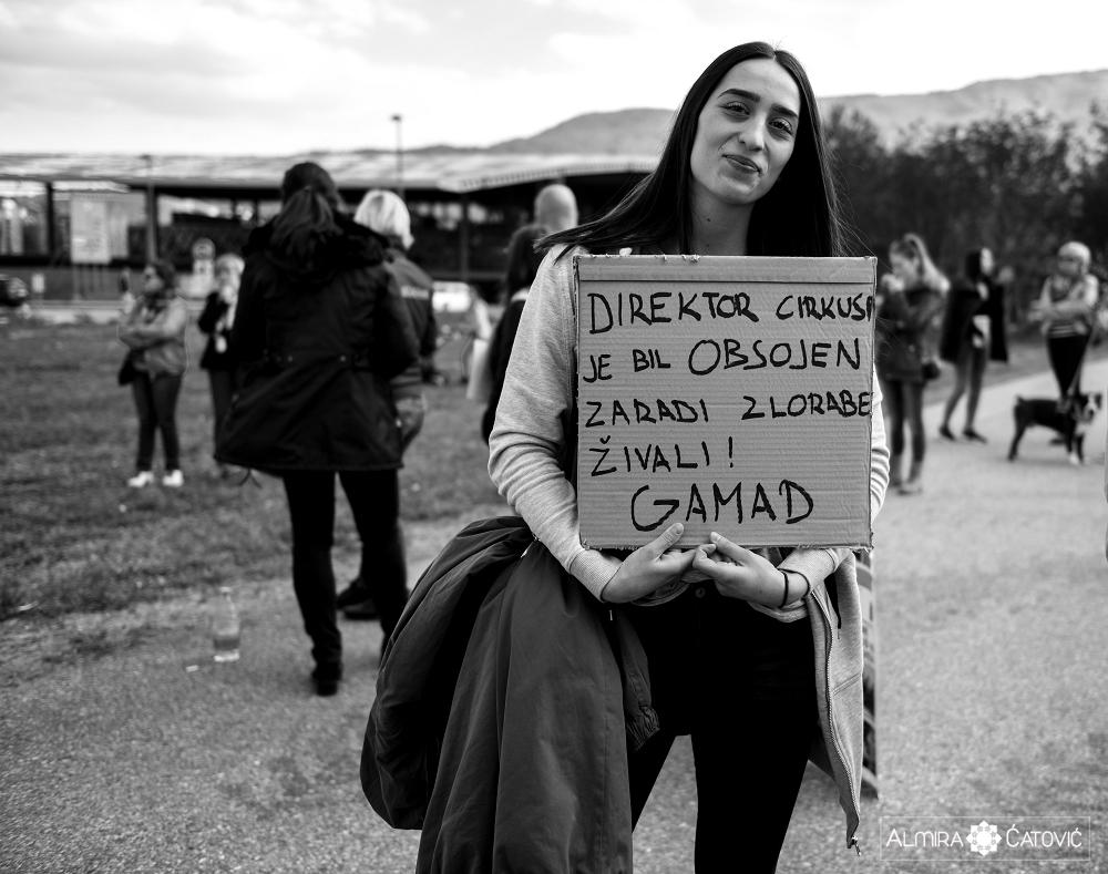 Almira Catovic Cirkus 2 (5).jpg