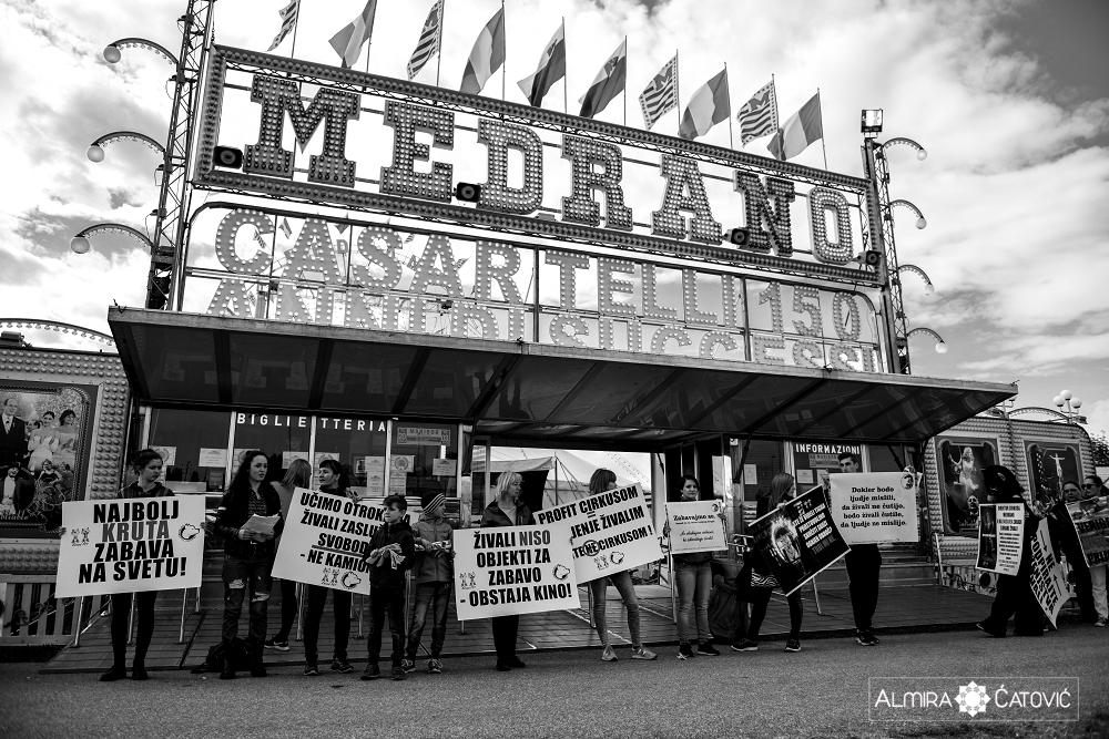 Almira Catovic Cirkus 2 (8).jpg