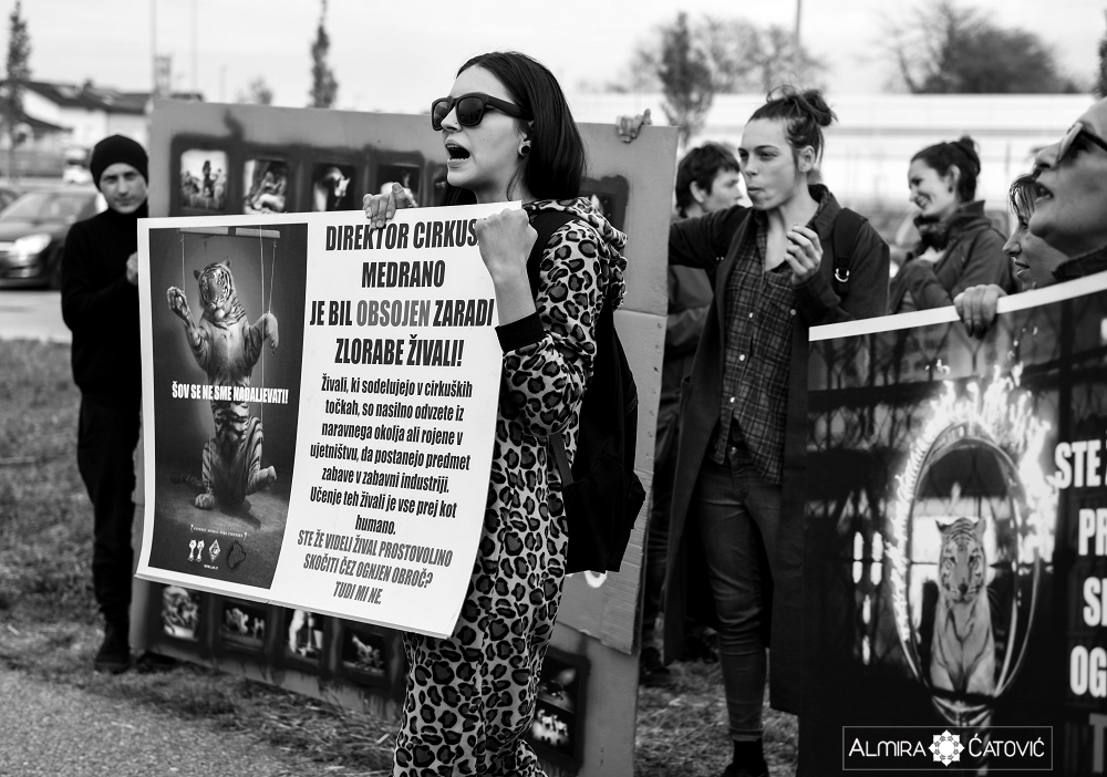 Almira Catovic Cirkus 2 (18).jpg