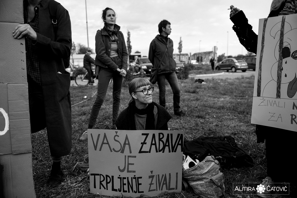 Almira Catovic Cirkus 2 (20).jpg