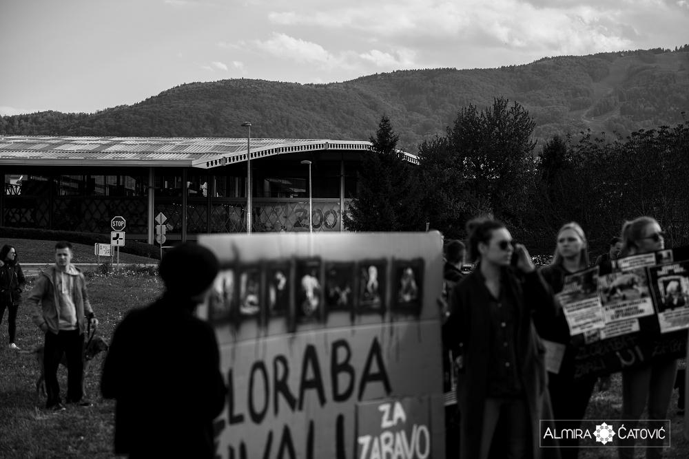 Almira Catovic Cirkus 2 (21).jpg