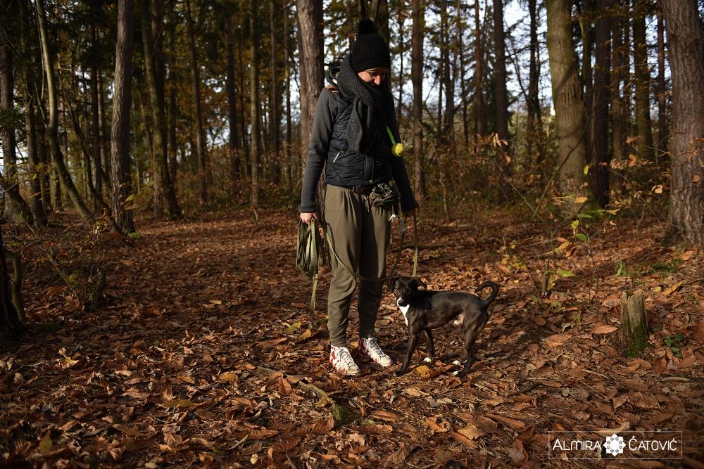 Almira Catovic Dog (3).jpg