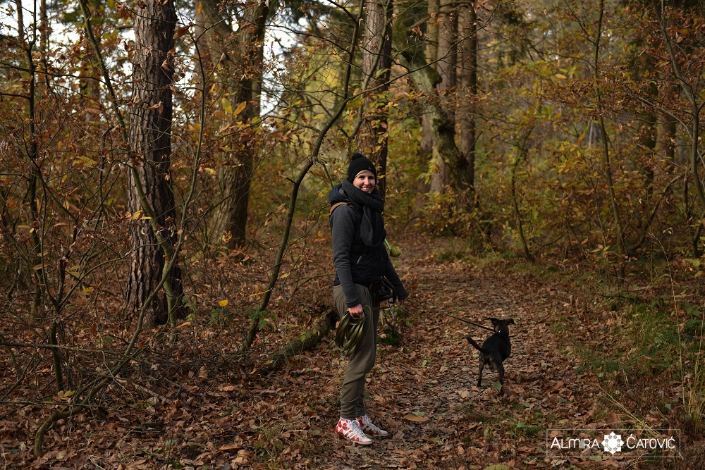 Almira Catovic Dog (8).jpg