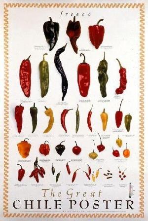 344_Chile_Poster_Fresh.jpg