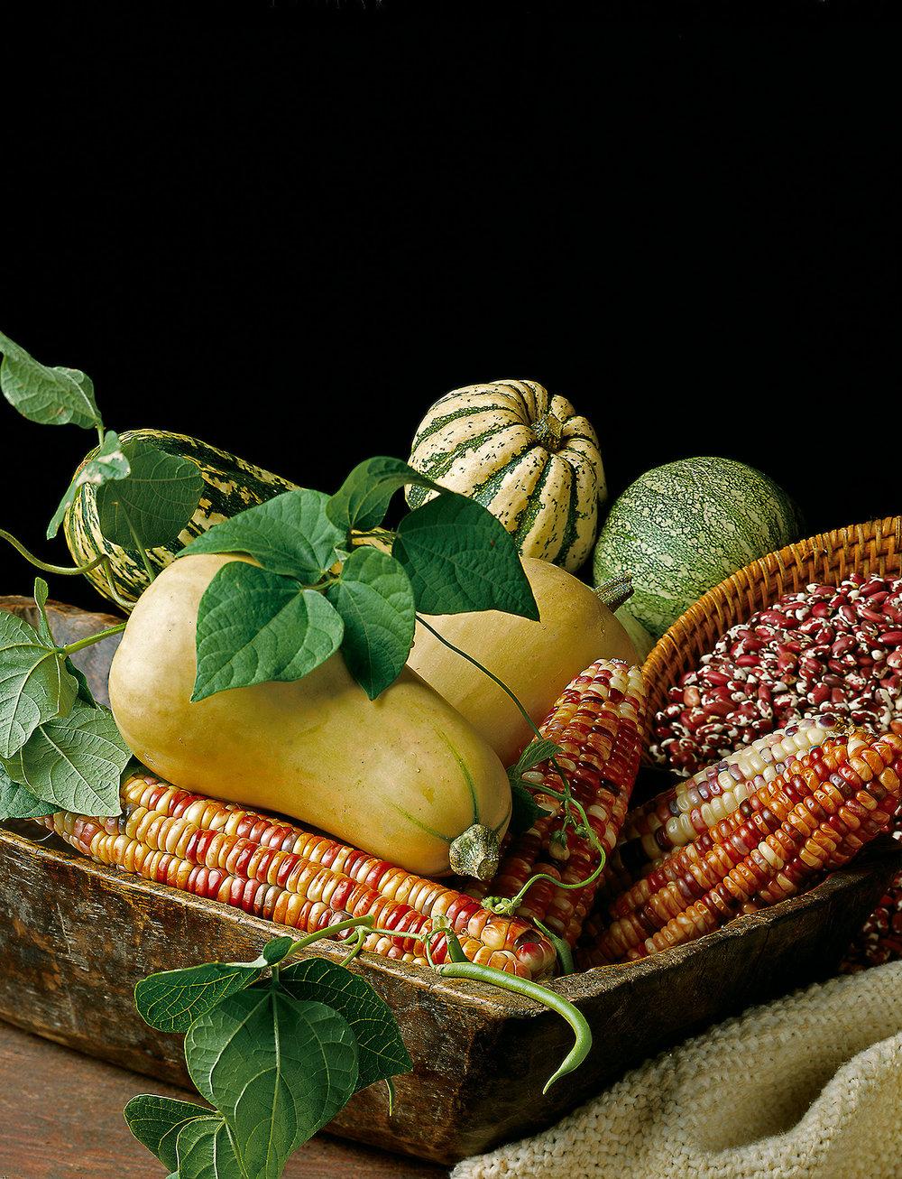 Corn,-Beans-and-Squash.jpg