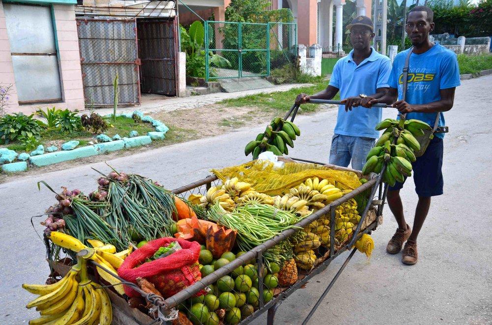 Cuba-U.S. Agroecology Network