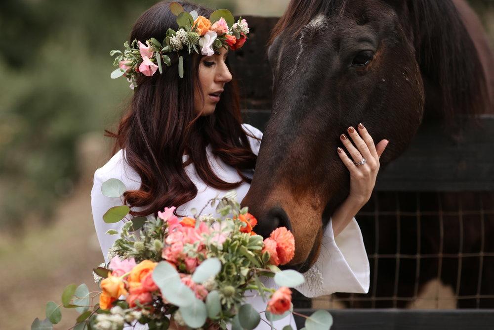 Boho bride with horse