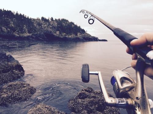 fishing-1081734_1920.jpg