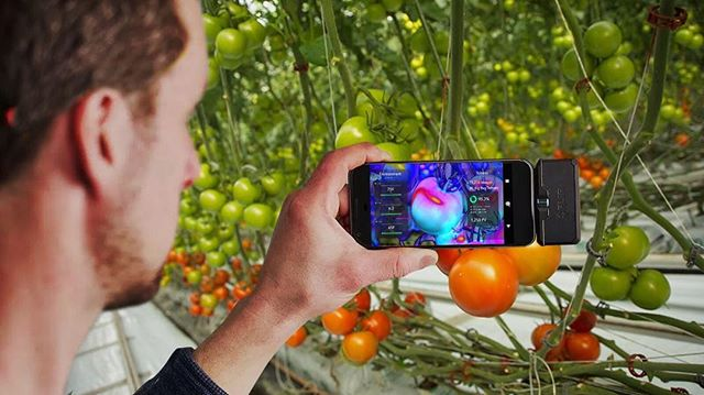 "Giving a talk today: ""Augmented Reality for the Breeding of Food & Medicine."" 17:30 @ #DavosBlockBase. PM for invite. @worldeconomicforum #wef2019"