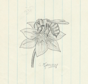 Honey Bee, pencil on paper, circa 1969, signature added by my mother at a later date