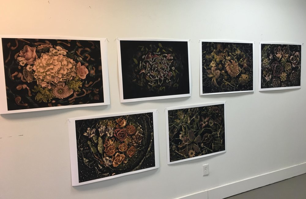 "22x30"" Photographs, 2016-7"