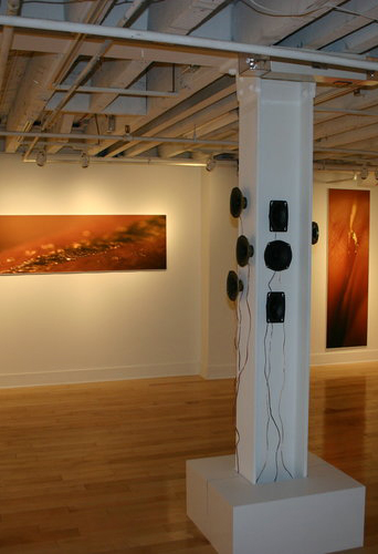 Installation view of (re)membering