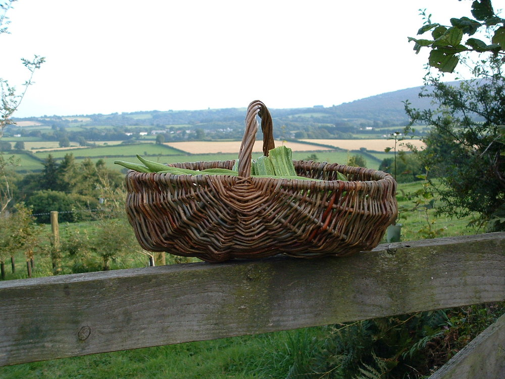 Brown Willow Frame Basket