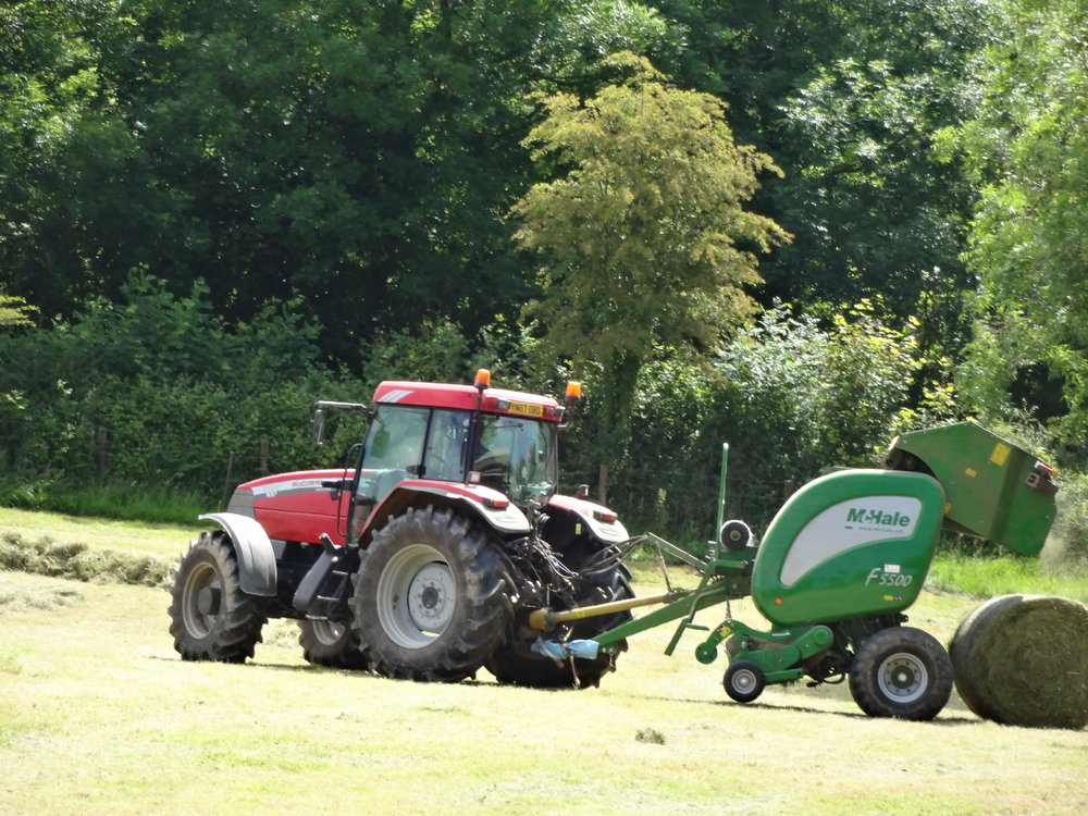 Mowing Silage