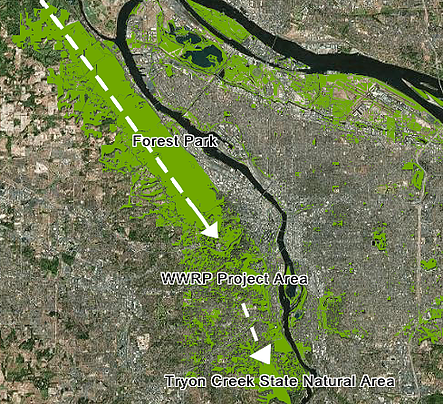 Image from an ArcGIS Story Map by Andrew Addessi, Portland State University:  http://arcg.is/2fHFcL0
