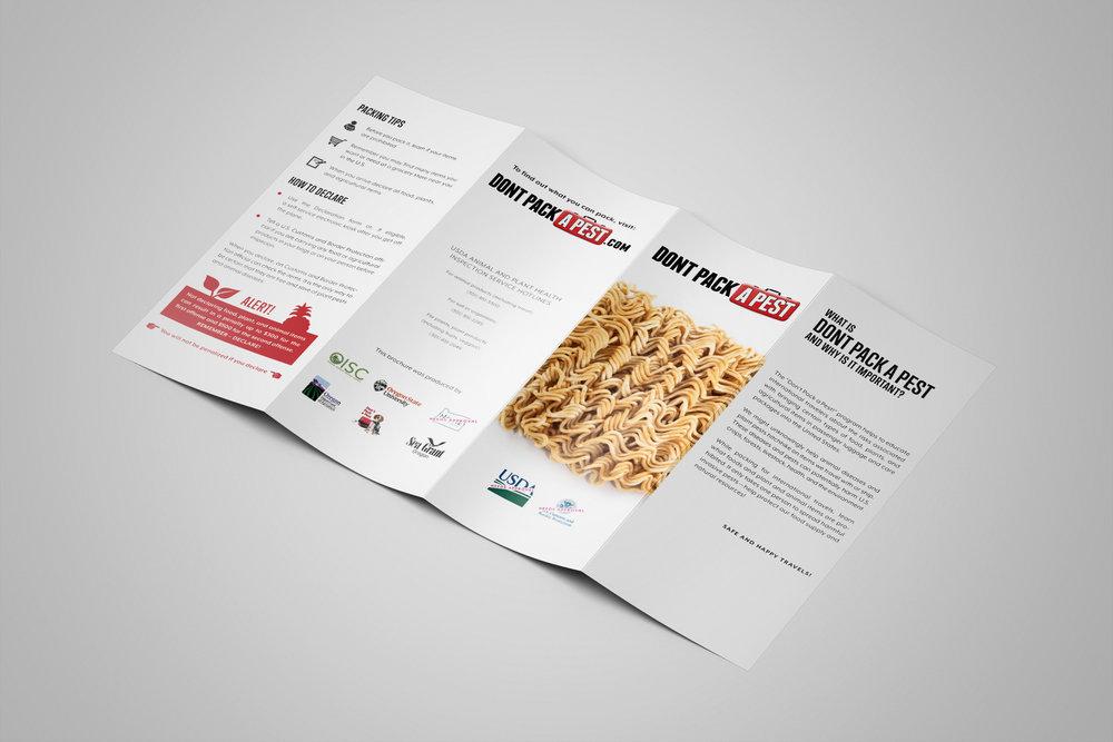 Mockup_DPAP_Brochure_Front.jpg