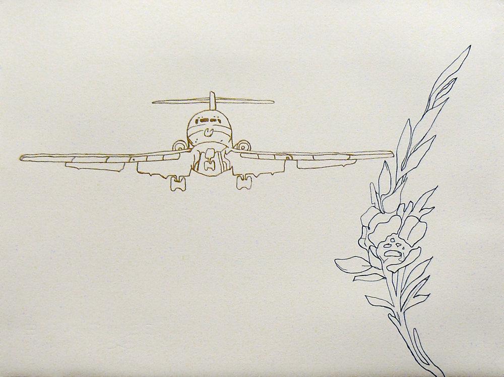 blackflower_plane.jpg