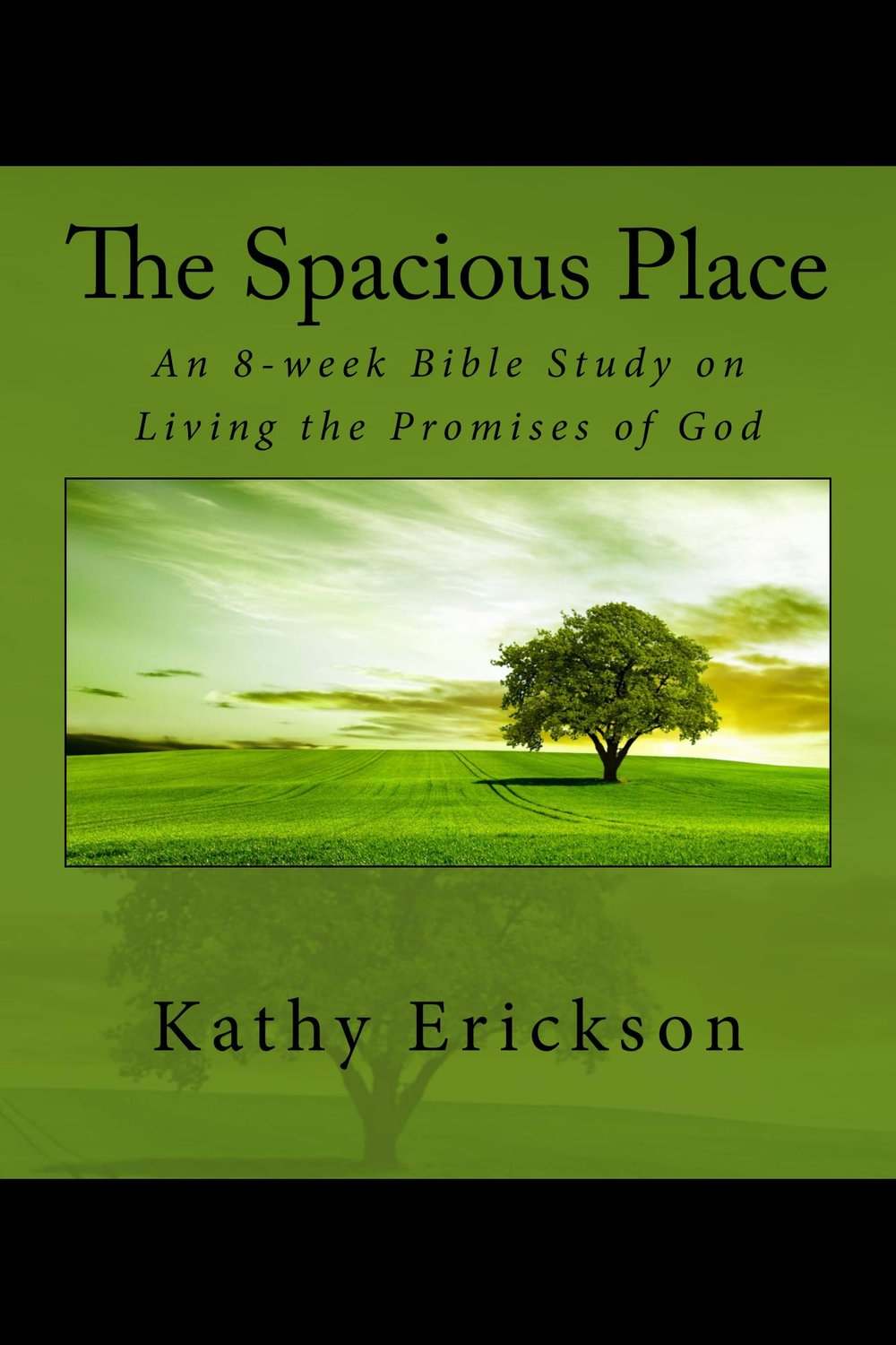 The_Spacious_Place_Cover_for_Kindle.jpg