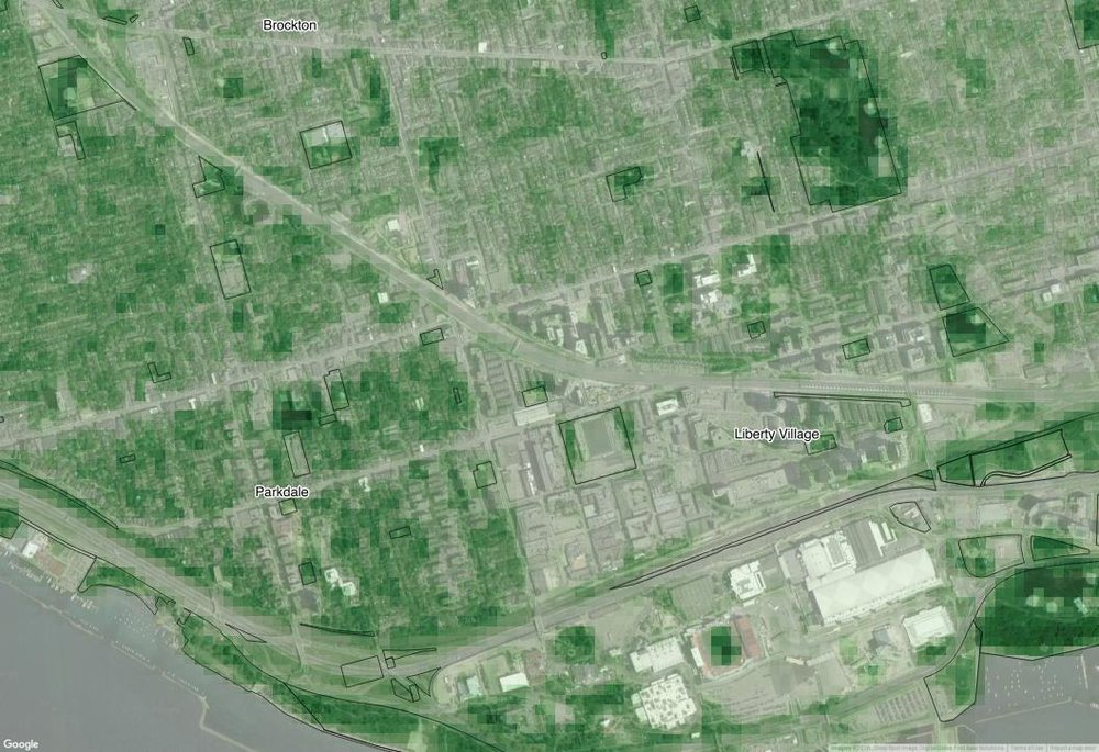 Screenshot of the NDVI in Parkdale/Liberty Village